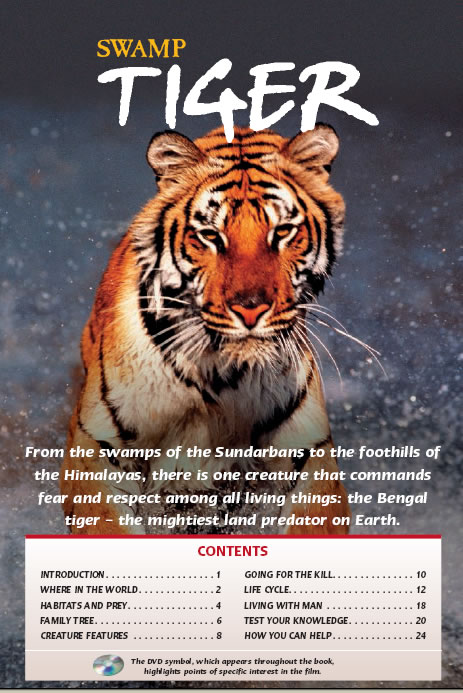 basic facts about the bengal tiger If you want to learn even more facts about this animal, review the lesson called bengal tiger facts: lesson for kids the lesson will help you: name the different colors that bengal tigers can be.